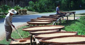 Vietnam sustainability projects